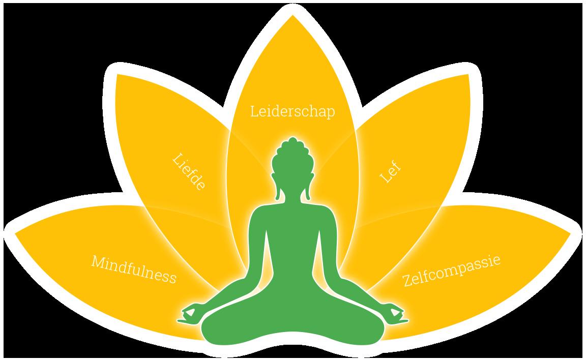 mindfulness compassie